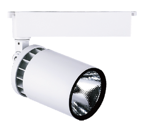 Spot LED Rail 30W Blanc Froid 220V